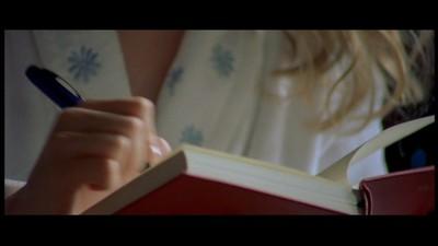 Bridget jones diary essay