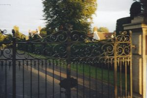 dashwood gates