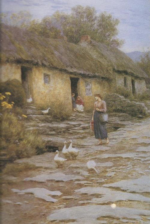 allinghamireland1891