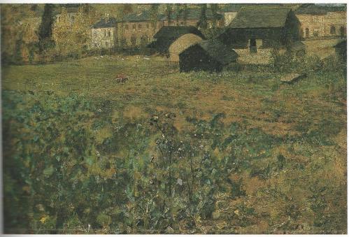 rosabrettturnipfieldcolor