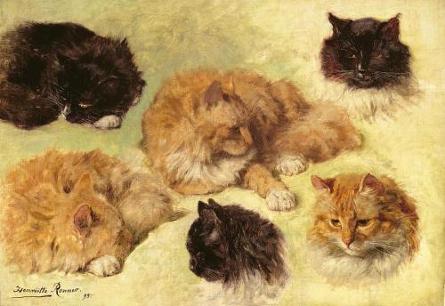 studies-of-cats-1895-henriette-ronner-knip