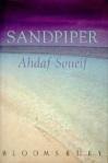 sandpipercover